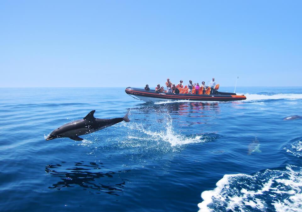 boat trips albufeira